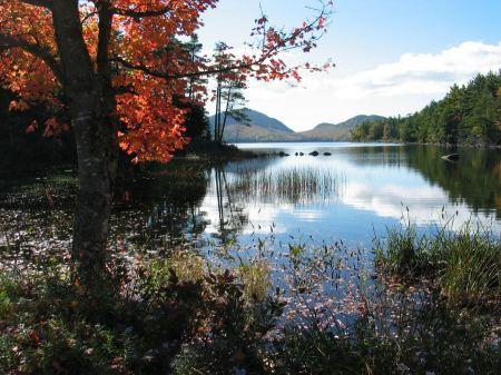 Free Autumn colors at Eagle Lake Acadia National Park