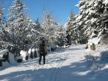 Free Cross-Country Skiing Acadia National Park