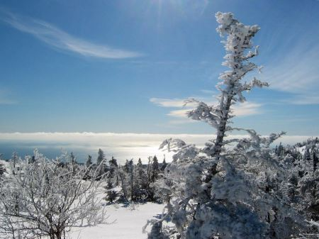 Free Winter Atop Cadillac Acadia National Park