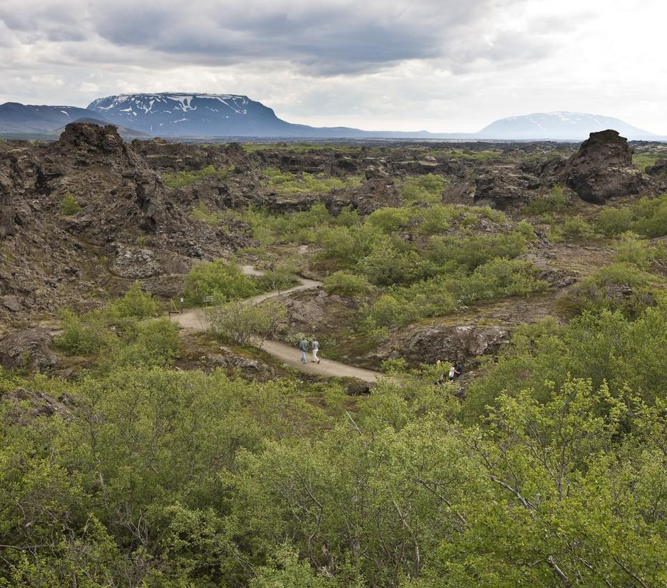 Free Lava formations at Dimmuborgir near Myvatn in northern Iceland