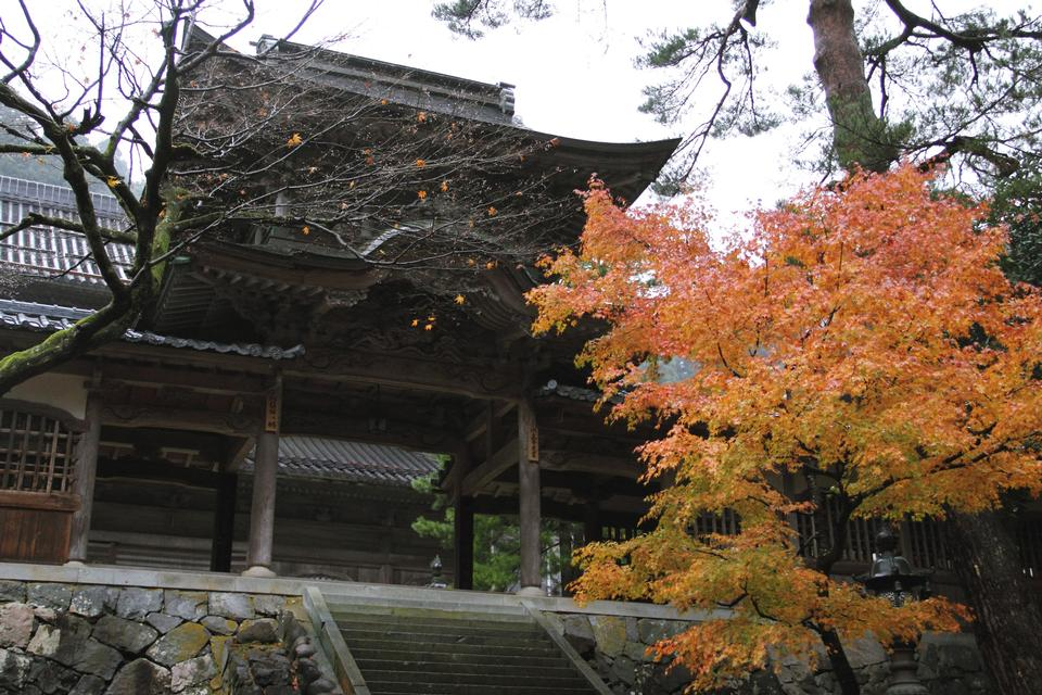 Free Daihonzan Eiheiji Temple Trip