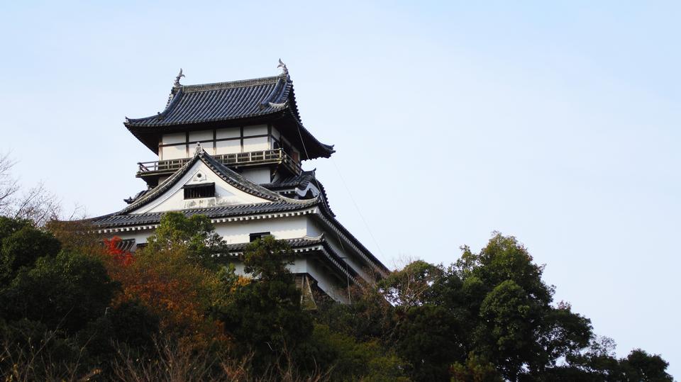 Free Inuyama Castle