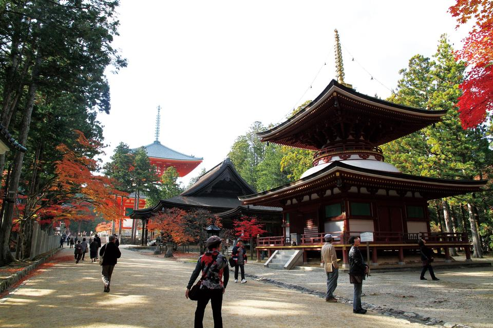 Free Pagoda in Koyasan,Kongobuji Temple Japan