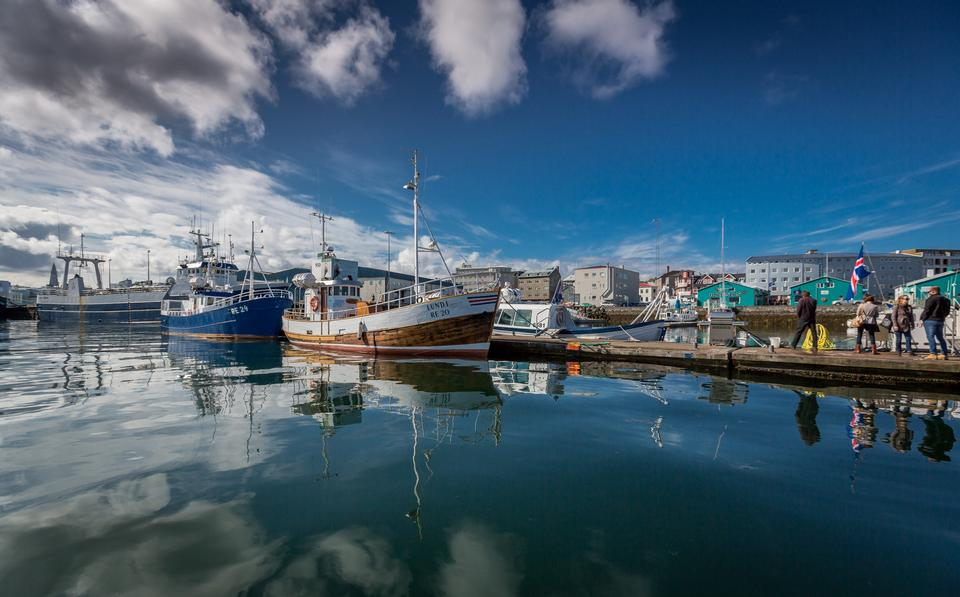Free Iceland, small fishing town
