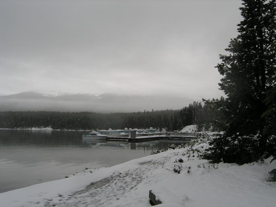 Free Maligne Lake Tours, Jasper AB Canada