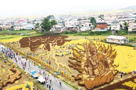 Free Japanese Amazing Rice Paddy Art