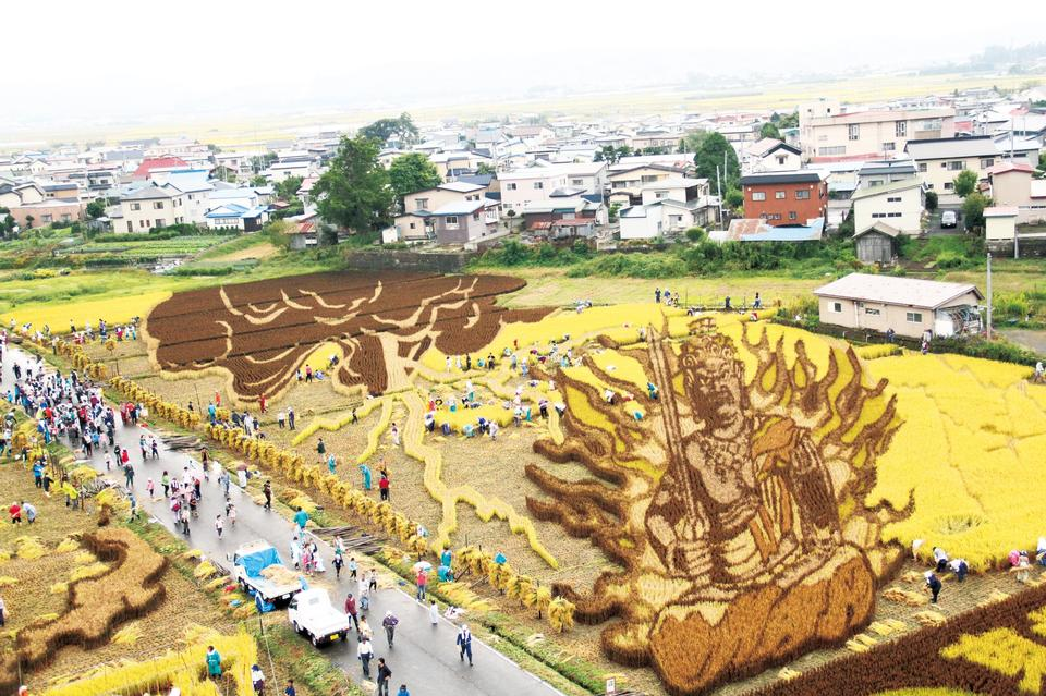 Free Japanese Amazing Rice Paddy Art