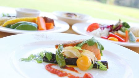 Free Grilled Salmon with Vegetables