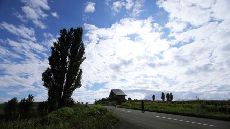 Free Patchwork Road Rolling Hills