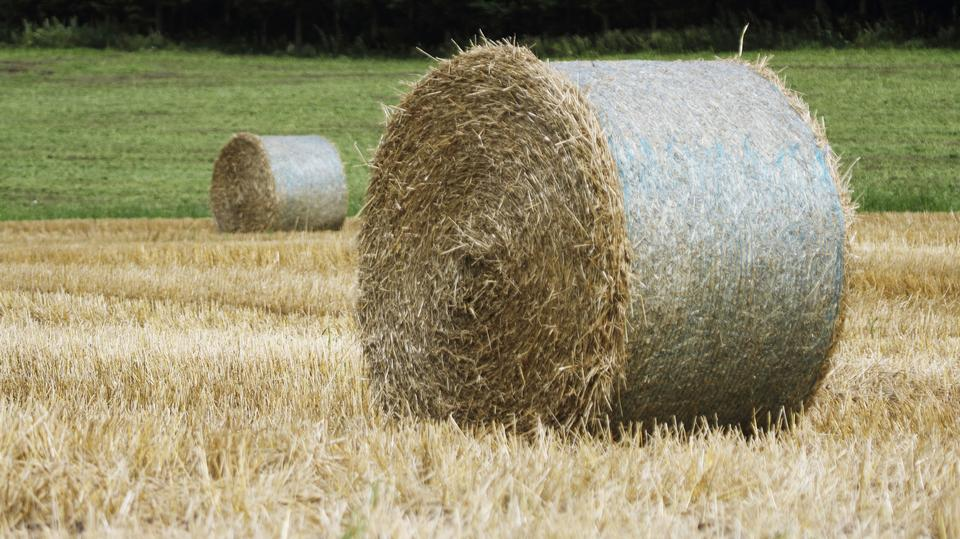 Free Patchwork Hill Farm