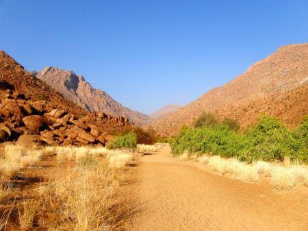Free Sandy track through Namibian desert