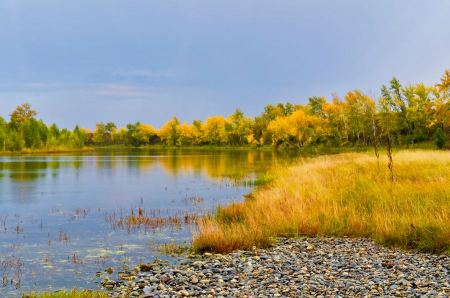 Free Panoramic landscape with forest lake in autumn rainy day