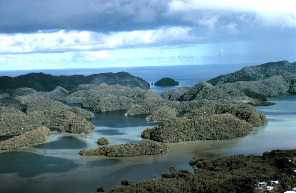 Free Aerial view of uplifted limestone islands in Palau
