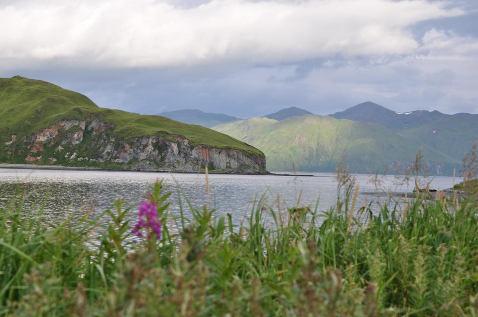 Free lowers, and inlets of Unalaska Island Alaska