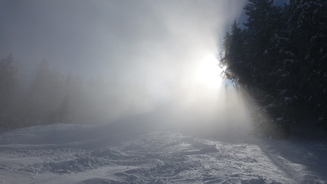 Free allgäu alpine pointed fog sun winter snow trees
