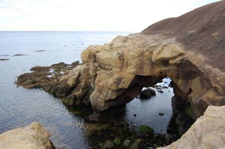 Free North Sea coast near Newcastle