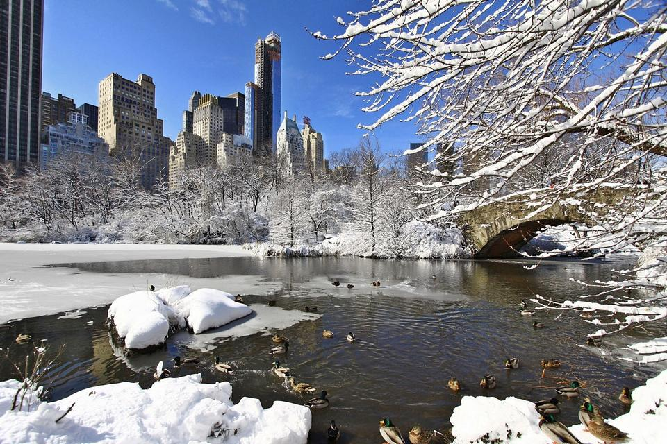 Free Day after snow storm in Central Park New York