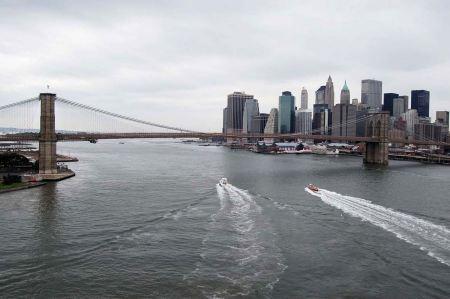 Free Brooklyn Bridge New York