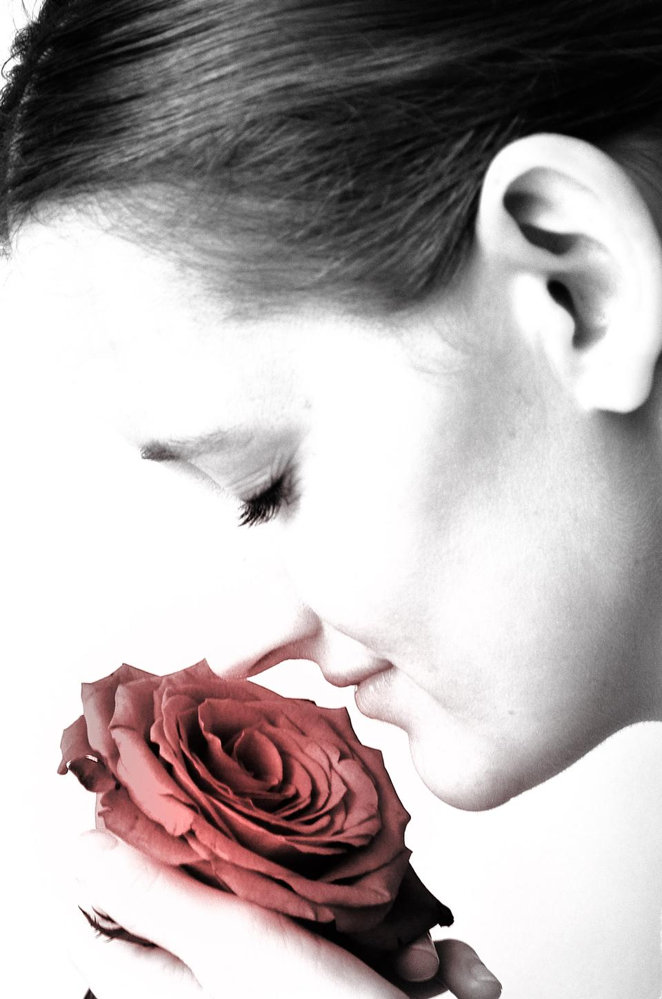 Free Beautiful Young Caucasian Woman With Rose