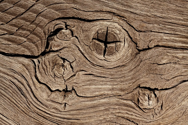 Free background brown close-up detail hardwood knotted