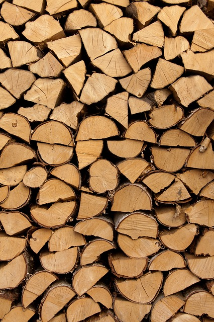 Free abstract background cut energy firewood fuel log