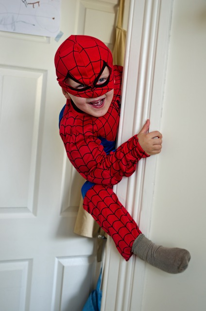 Free little spiderman spider boy child funny mask