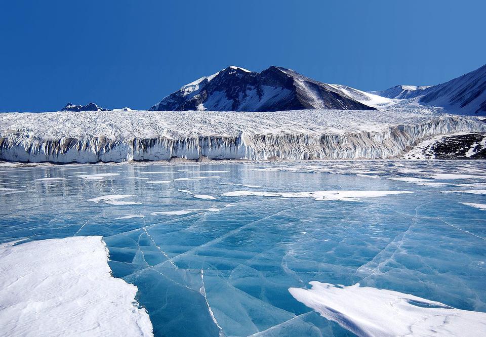 Free Antarctic Glaciers