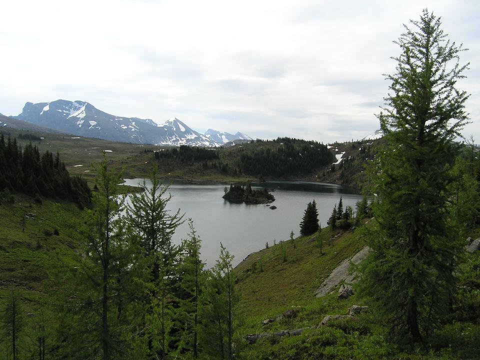 Free Hiking Banff National Park - Sunshine Meadows