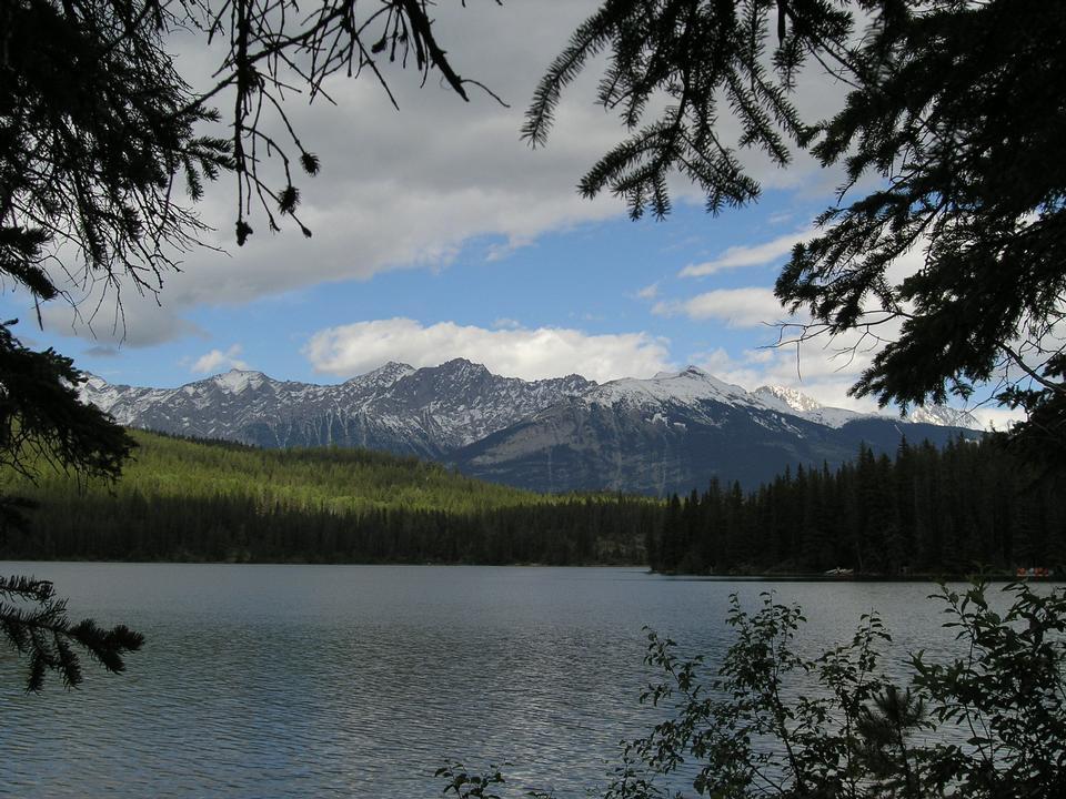 Free Banff Hiking Sulphur Mountain Trail