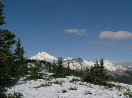 Free Sulphur Mountain Alberta