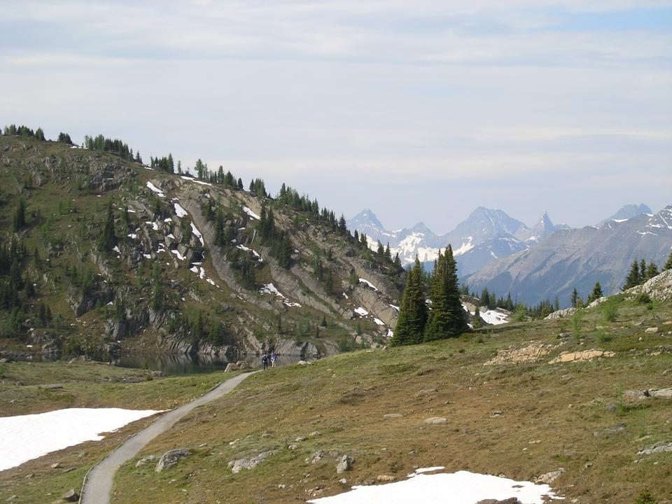 Free Sunshine Meadows Trail - Hiking trip
