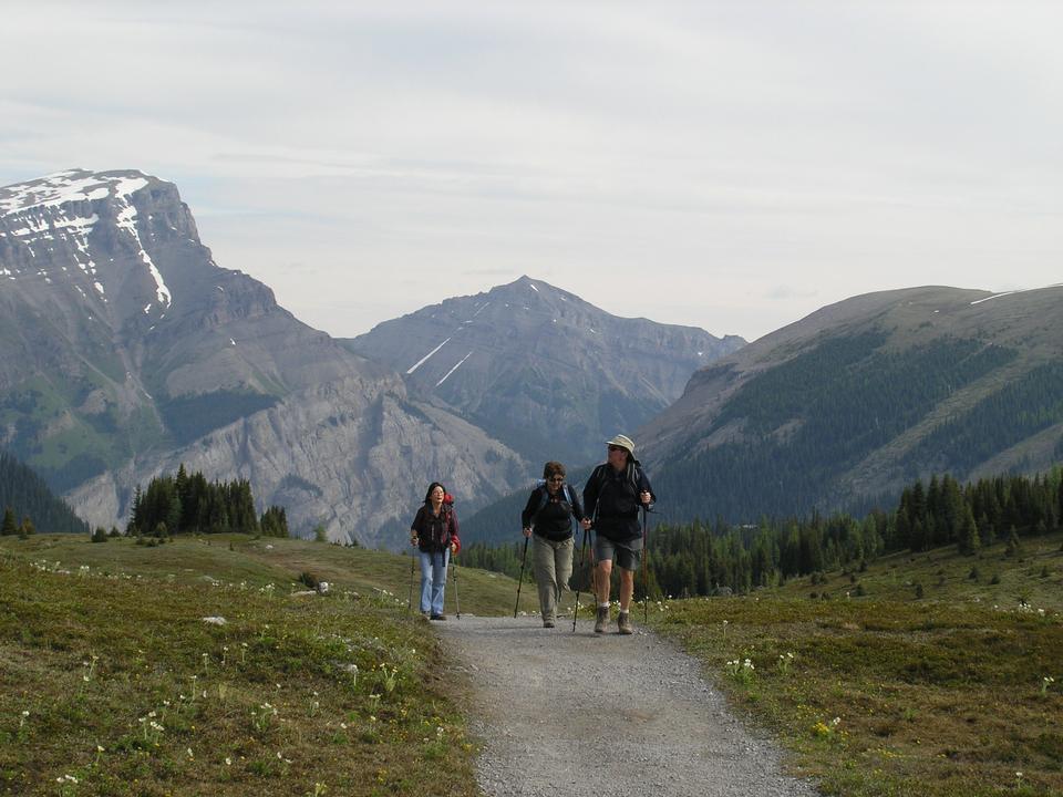 Free Sunshine Meadows Trail - Hiking trip