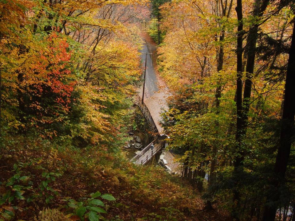 Free Hiking and Nature Trails in the White Mountains of New Hampshire
