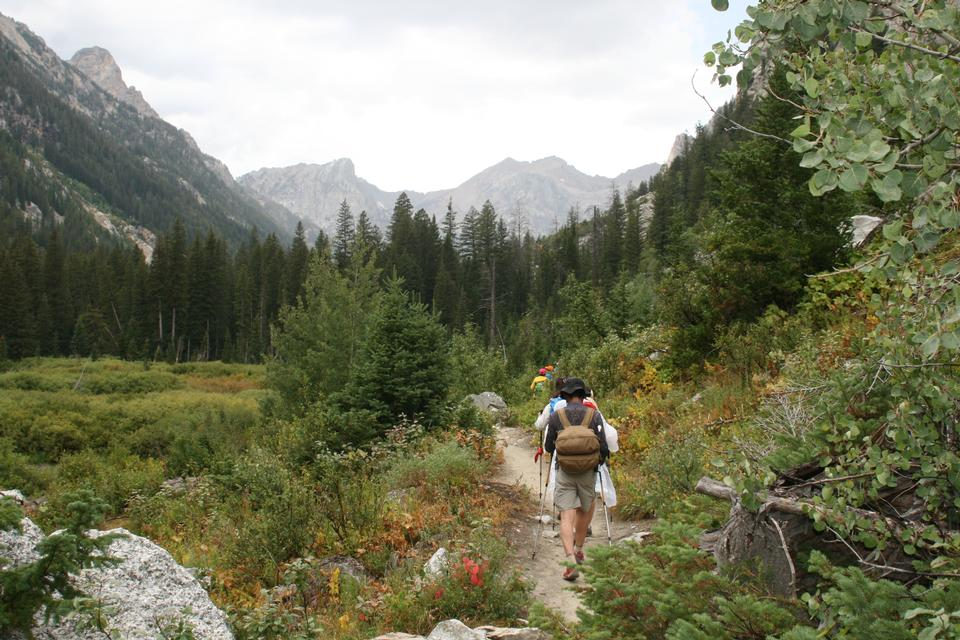 Free Grand Teton and Mt. Owen from Taggart Lake Trail