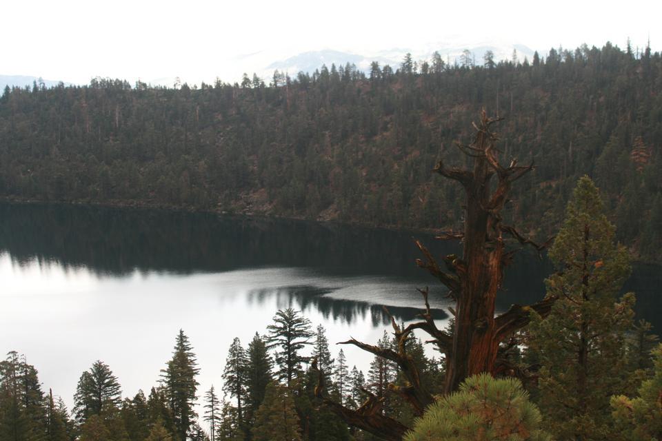 Free South Lake Tahoe Trails