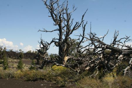 Free Craters of the Moon National Monument