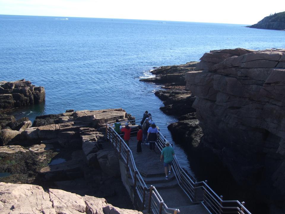 Free The Seashore, Acadia National Park