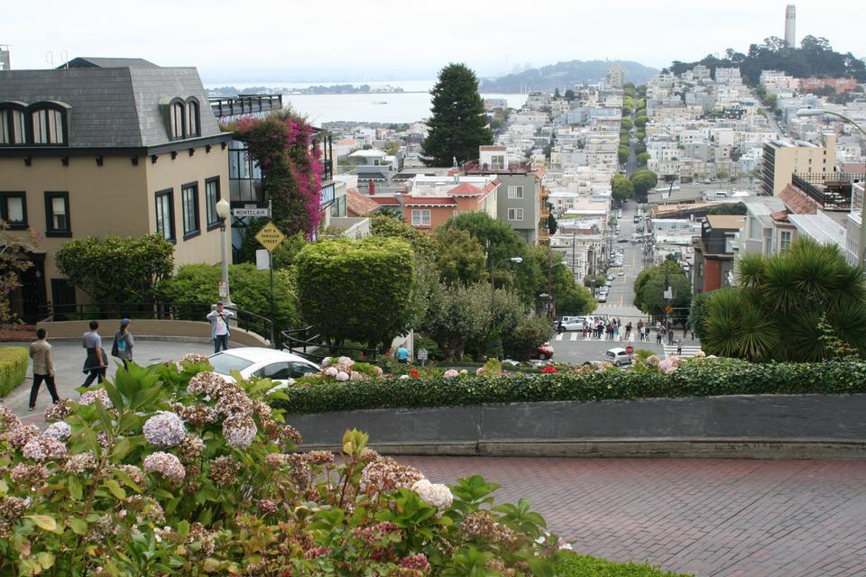 Free San Francisco City Tour