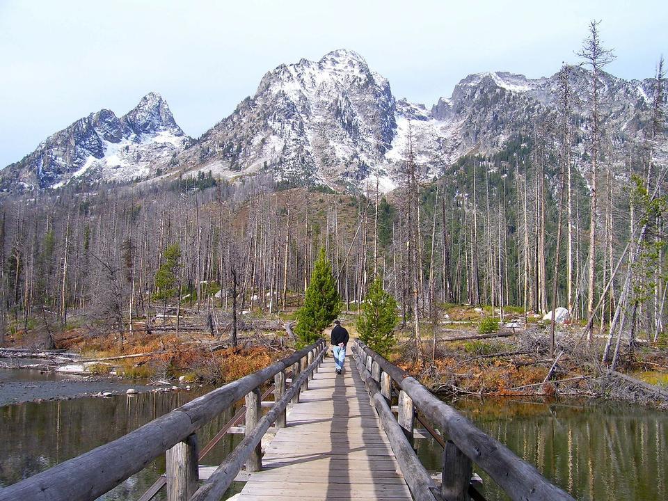 Free Grand Teton National Park Wyoming