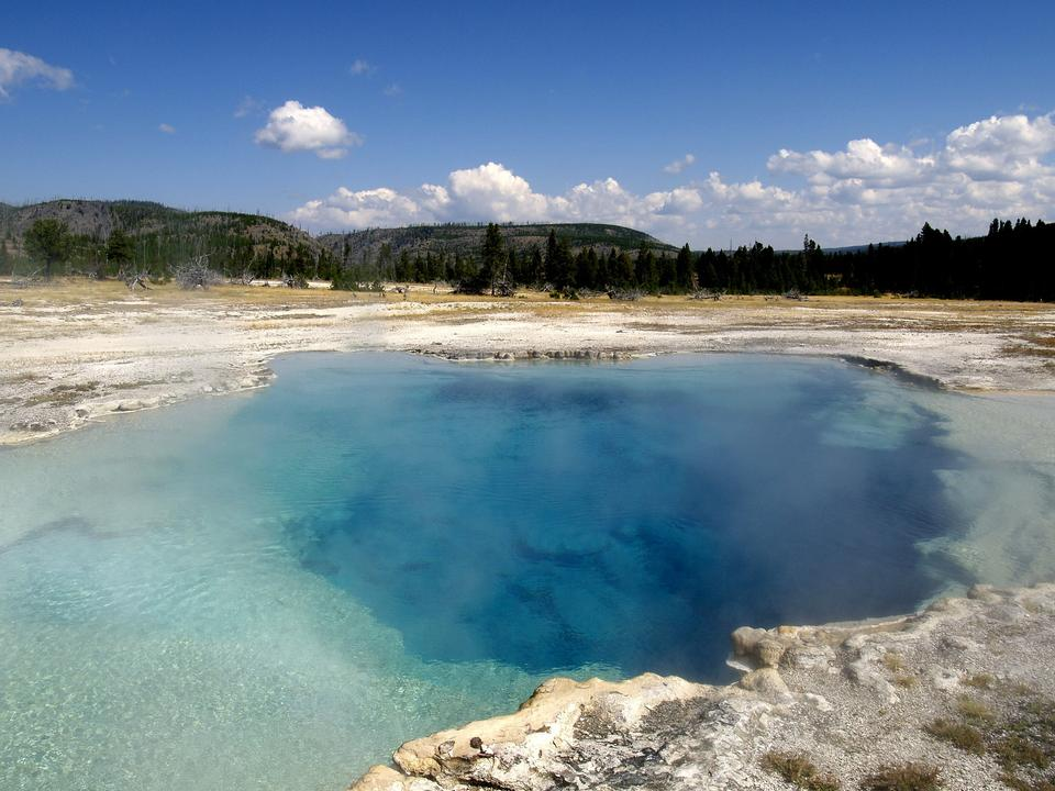 Free Beaver Ponds Loop Trail - Yellowstone National Park