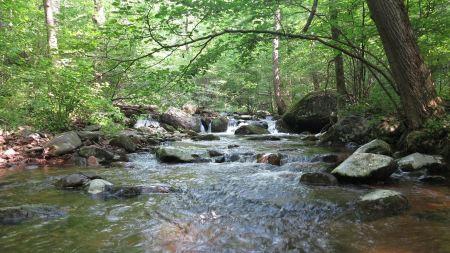 Free Hazel River Hike