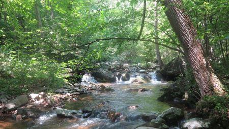 Free Hazel River Hiking