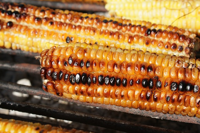 Free barbecue corn fresh grill grilled healthy sweet