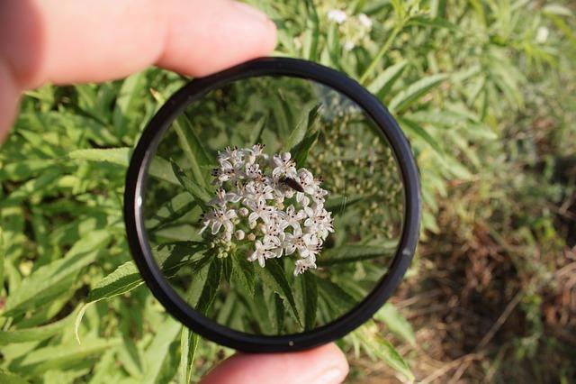 Free circular filter polarizing nature technology
