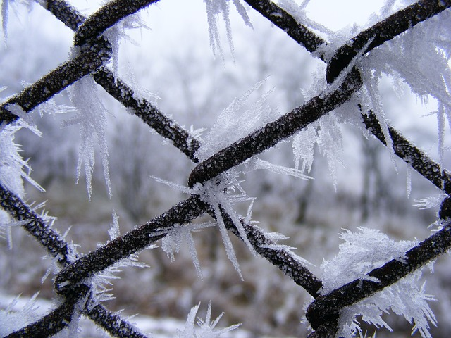 Free nature season winter ice crystal