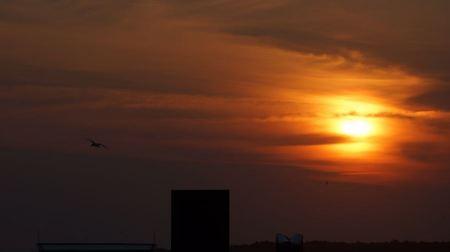Free Sunset Chincoteague Island