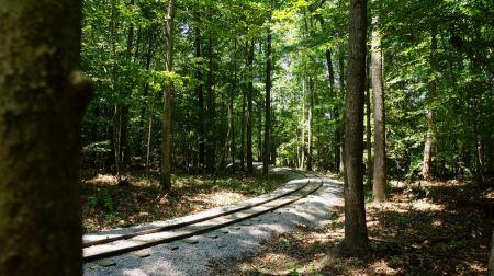 Free Lake Trail Burke Lake Park Virginia