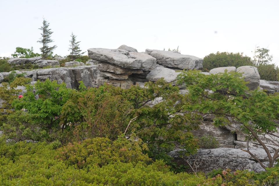 Free Bear Rocks : Climbing, Hiking