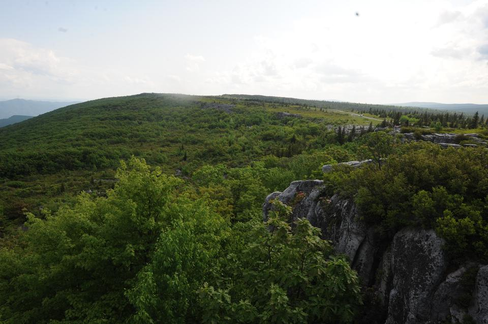 Free Dolly Sods and Bear Rocks, WV