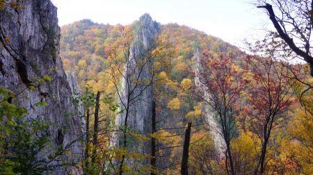 Free Nelson Rocks Preserve in West Virginia